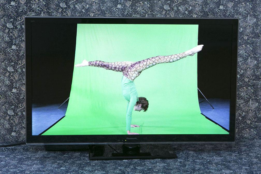 'Ananas' Linda Quinlan, installation view 6ix Degrees at IMMA